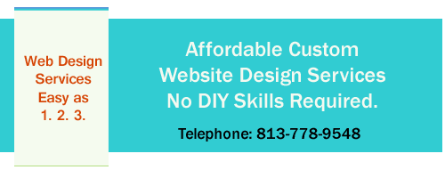tampa, brandon, land o lakes website design
